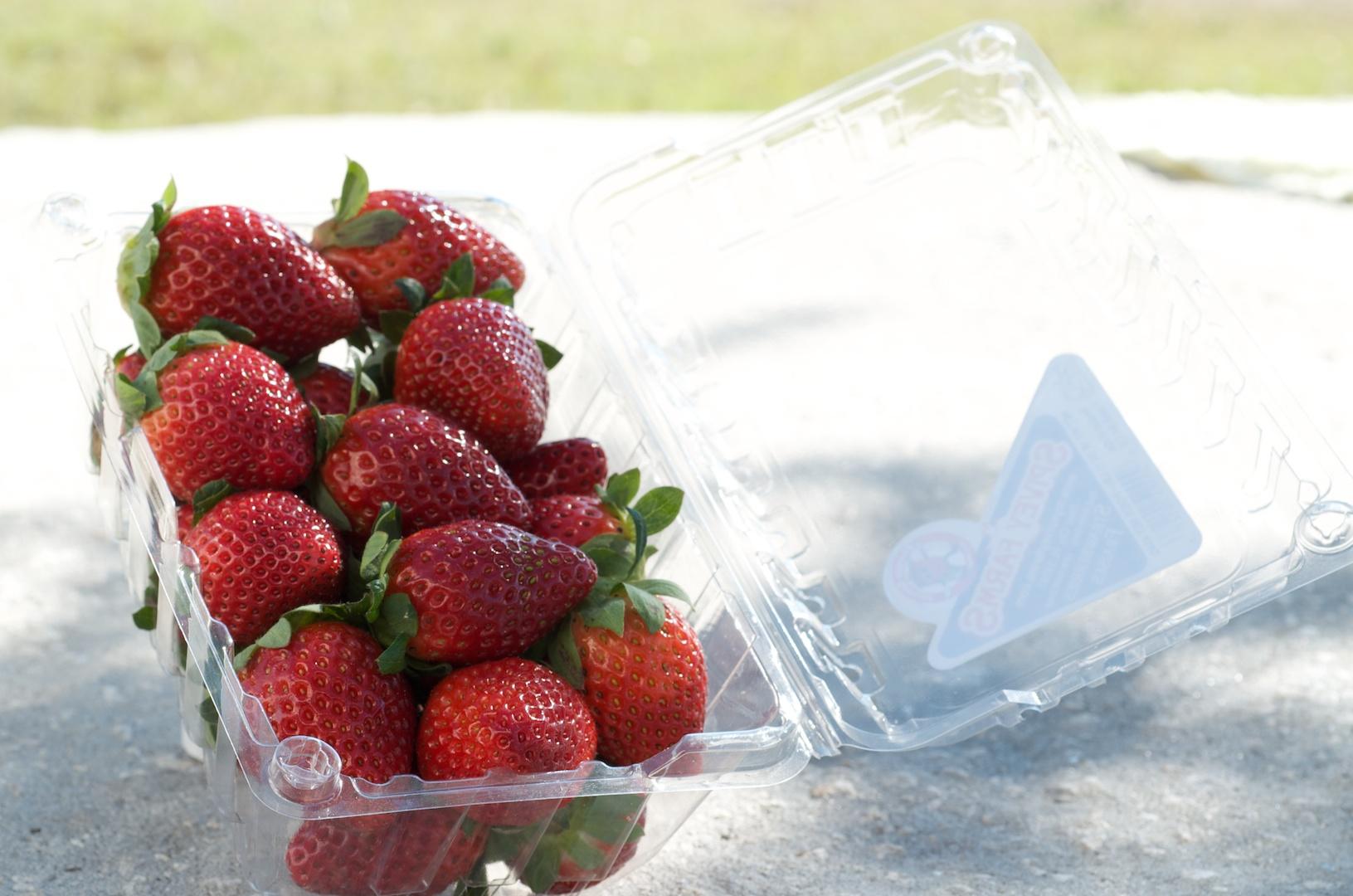 http://strawberrysue.com/wp-content/uploads/2011/09/CA23139.jpg