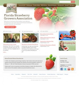 A fresh design for the Florida Strawberry Growers Association's official website.